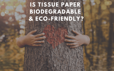 Is Tissue Paper Biodegradable and Eco-friendly?