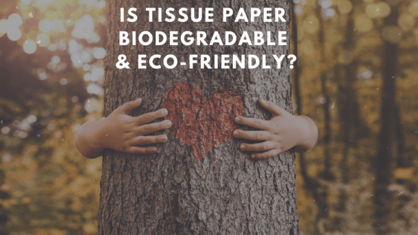 is tissue paper biodegradable